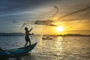 Comissão apresenta progressos e oportunidades de pesca sustentável até 2020